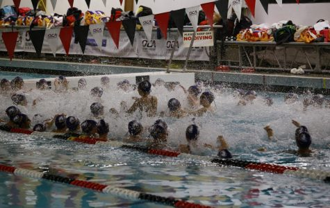 Issaquah Girls Swim and Dive Team Loses to Newport High School