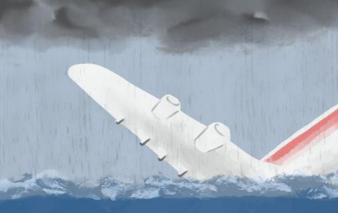 A Brand New Plane, a Brutal Accident