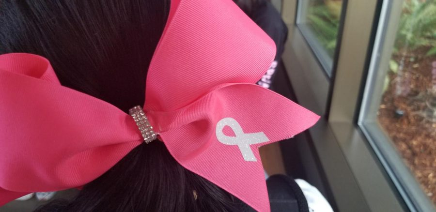 SUPPORT WITH FLARE The IHS Cheer Team's pink bows with the breast cancer pink ribbon stitched on the front are just one example of accessories fall sports teams use to promote Breast Cancer Awareness Month.