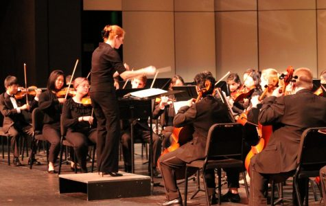 Greenwood and Chamber Strings Provide a Winter Spectacle