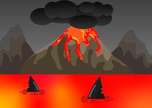 Sharks Are Living in Volcanoes?
