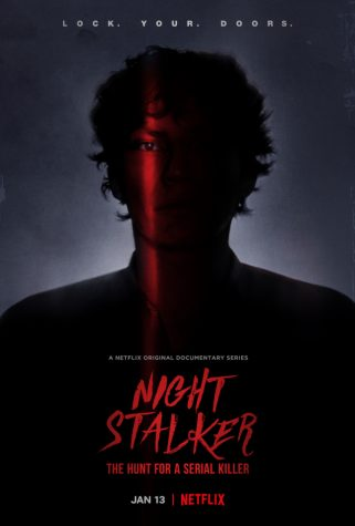 A Mediocre Stalker Review